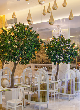 ORANGE GROVE RESTAURANT